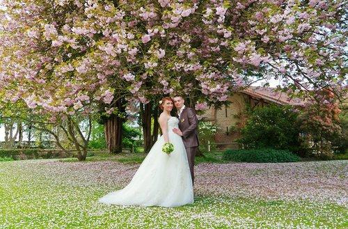 Photographe mariage - Nicolas Lefebvre Photographe - photo 11