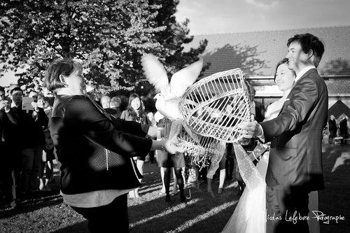 Photographe mariage - Nicolas Lefebvre Photographe - photo 9