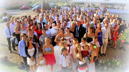 Photographe mariage - Dominique DUBREUIL  - photo 50