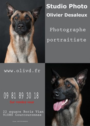 Photographe - Studio Photo Olivier Desaleux - photo 4