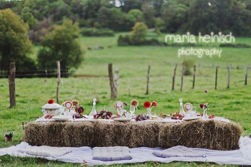 Photographe - Maria Heinisch Photography - photo 72