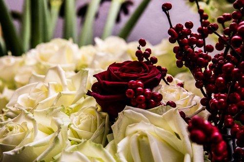 Photographe mariage - François Vézien PHOTOGRAPHE - photo 10