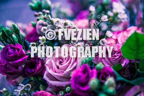 Photographe mariage - François Vézien PHOTOGRAPHE - photo 41