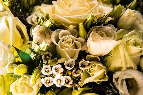 Photographe mariage - François Vézien PHOTOGRAPHE - photo 16