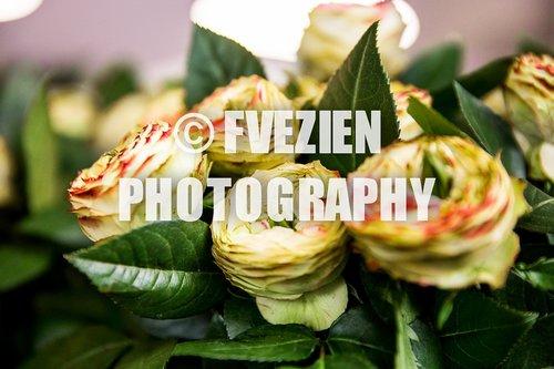 Photographe mariage - François Vézien PHOTOGRAPHE - photo 65