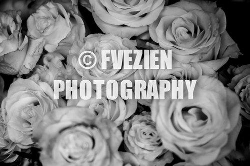 Photographe mariage - François Vézien PHOTOGRAPHE - photo 59