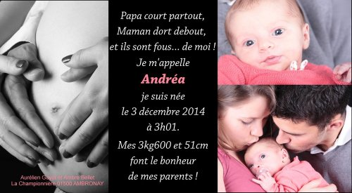 Photographe mariage - OVIGUE PASCAL - photo 19