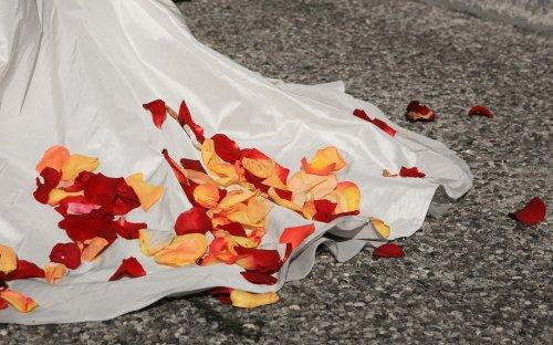 Photographe mariage - Il était une fois...nous - photo 8