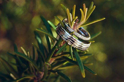 Photographe mariage - Nicolas Terraes | Photographe mariage et portrait - photo 16