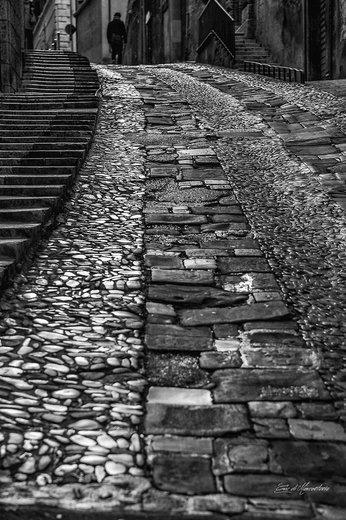 Photographe - DIMARCANTONIO ERIC - photo 27