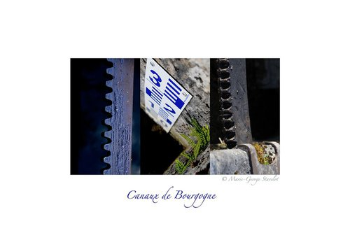 Photographe mariage - Marie-George Stavelot - photo 62