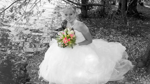 Photographe mariage - Dominique DUBREUIL  - photo 36