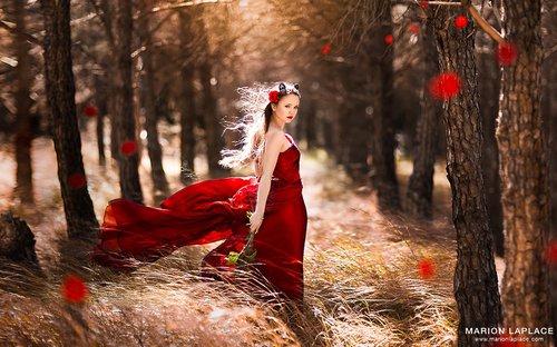 Photographe mariage - Marion Laplace Photographe - photo 23