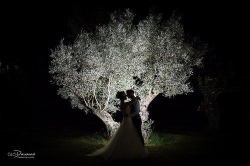 Photographe mariage - C&S DAUMAS - photo 86