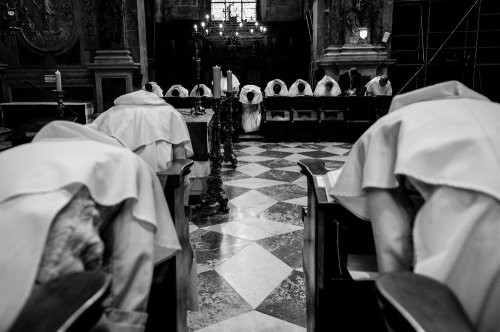 Photographe - Laurent Wangermez Photographe - photo 15