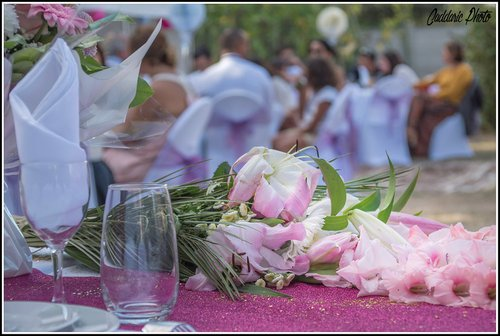 Photographe mariage - Caddaric Photo - photo 16