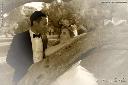 Photographe mariage - Terry White photo - photo 33