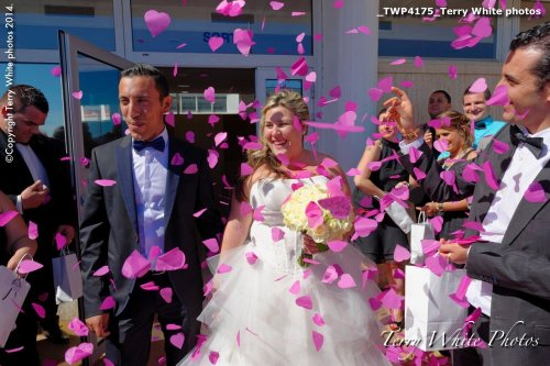 Photographe mariage - Terry White photo - photo 18