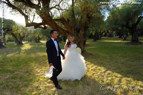 Photographe mariage - Terry White photo - photo 39