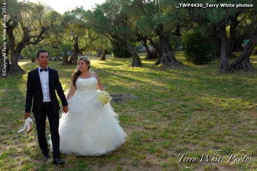 Photographe mariage - Terry White photo - photo 37