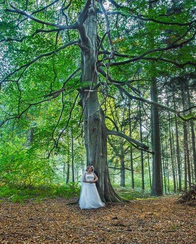 Photographe mariage - David Mignot Photos - photo 34