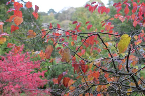 Photographe - btorrubia.com - photo 90