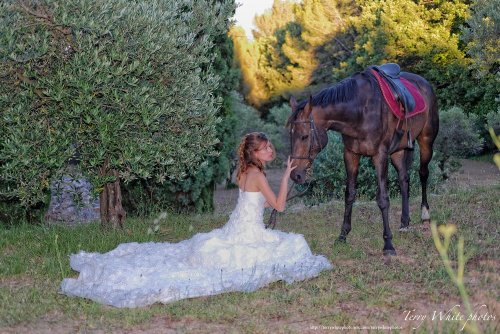 Photographe mariage - Terry White photo - photo 51