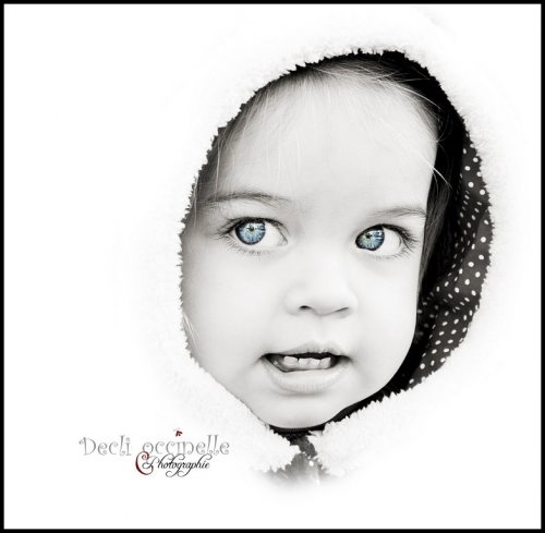 Photographe - Declic'occinelle - photo 5