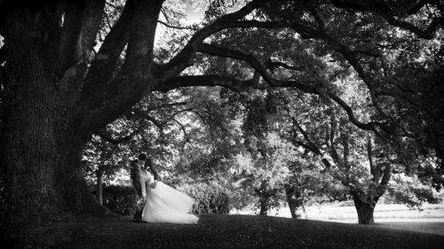 Photographe mariage - fouquet sylvain - photo 37