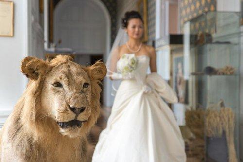 Photographe mariage - fouquet sylvain - photo 34