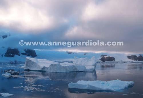 Photographe - ANNE GUARDIOLA - photo 6