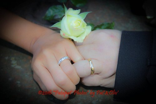 Photographe mariage - Patapat' Photos by Pat'&Oliv' - photo 9