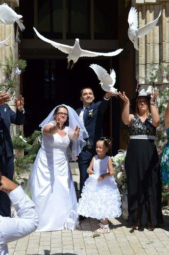 Photographe mariage - Stéphanie Delaire Photographe - photo 3