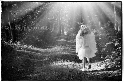 Photographe mariage - ST Photo Art - photo 16