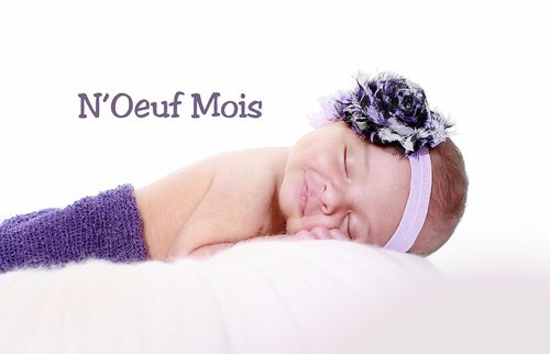 Photographe - N'Oeuf Mois  - photo 12