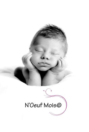 Photographe - N'Oeuf Mois  - photo 17