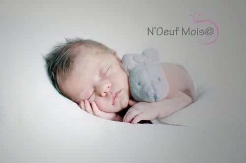 Photographe - N'Oeuf Mois  - photo 20