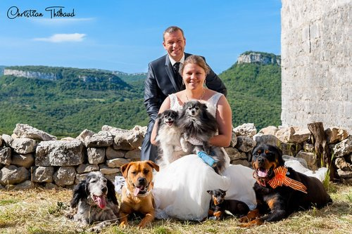 Photographe mariage - THIBAUD Christian, photographe - photo 73