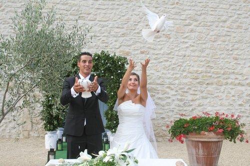 Photographe mariage - C.Jourdan photographe camargue - photo 22