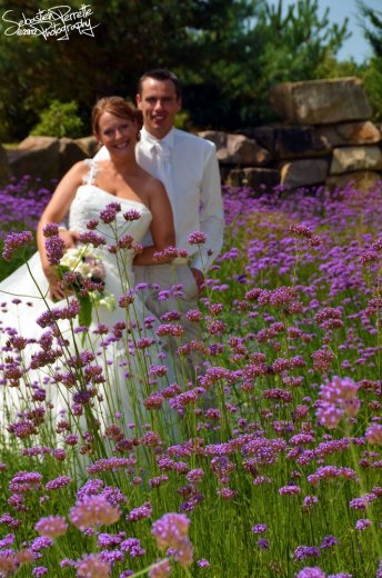 Photographe mariage - Sébastien PERRETTE  - photo 65