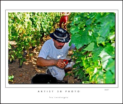 Photographe - artist38 - photo 4