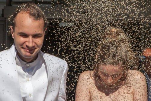 Photographe mariage - jean claude morel - photo 17