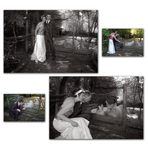 Photographe mariage - luigiphotographie - photo 12