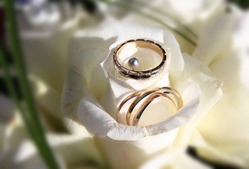 Photographe mariage - Philippe Desumeur - Mariage  - photo 7