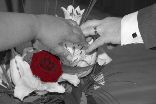 Photographe mariage - BERNARD EYQUEM PHOTOGRAPHE - photo 1