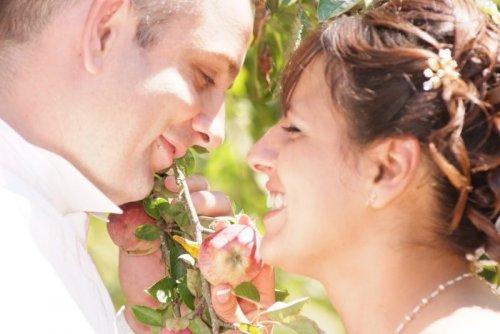Photographe mariage - MARTIN-ALBA PHOTOVIDEO - photo 39