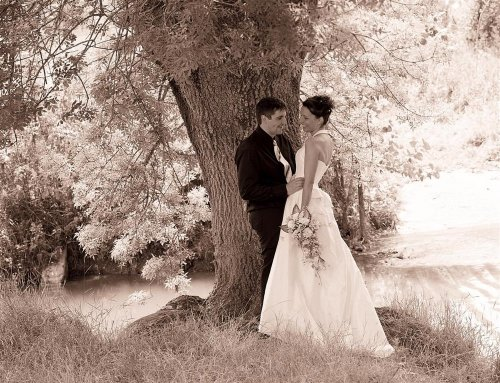Photographe mariage - PHOTO VIGREUX - photo 34