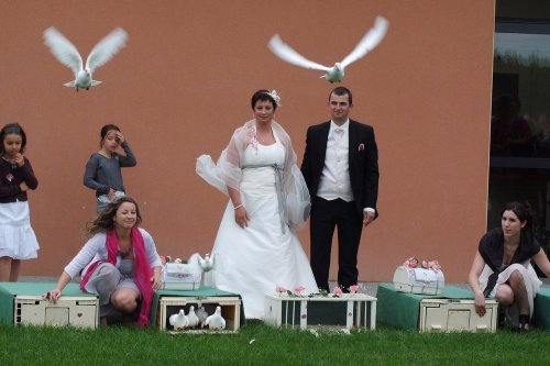 Photographe mariage - Quélais lolita - photo 72