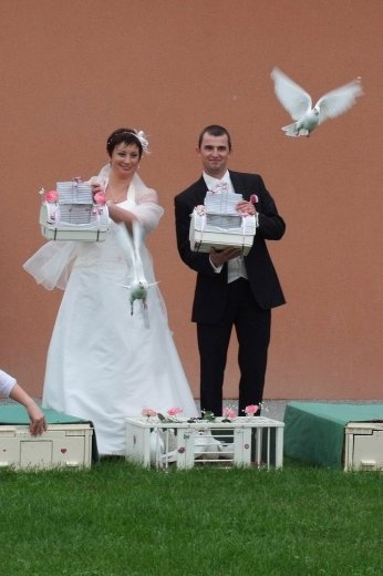 Photographe mariage - Quélais lolita - photo 71