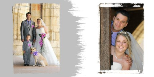Photographe mariage - Photolouis  l'Image Pro  - photo 3